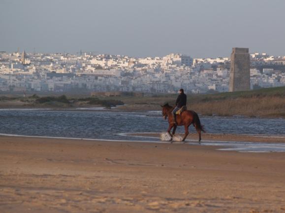 Al fondo, Conil desde la playa de El Palmar en Vejer, a unos 40 km. de Cádiz
