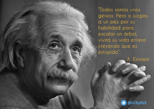 Fonseca cita a Einstein para ilustrar la teoría de las Inteligencias Múltiples de Howard Gardner